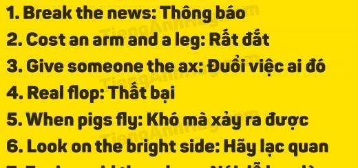 thanhnguthongdung